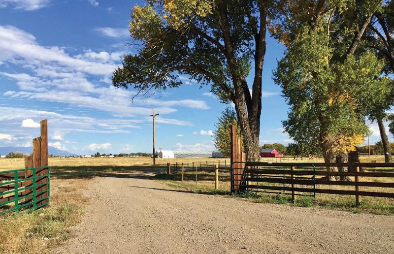 The Hemp Farm